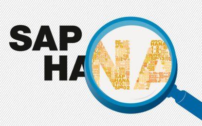 Entendiendo SAP HANA