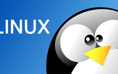 Linux para principiantes (Manuales y Guías)