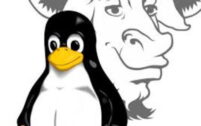Cómo montar un servidor web y alojar una web en GNU/Linux